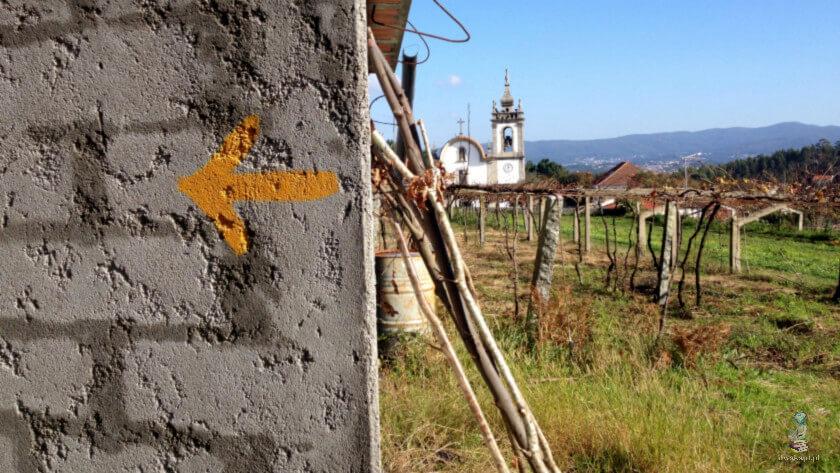 W drodze do Viana de Castelo