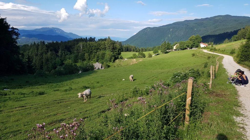 słowenia co warto zobaczyć